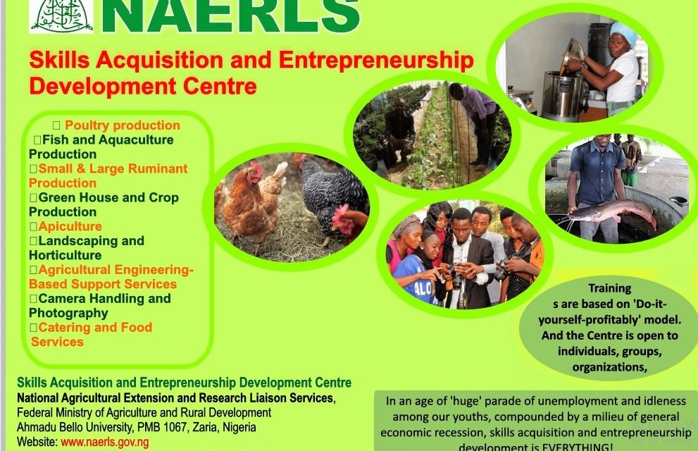 NAERLS Launches Renewed Efforts at Entrepreneurship Development