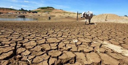 dry-land-540x275